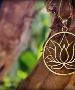 lotus-symbol-yoga-hippie-meditation